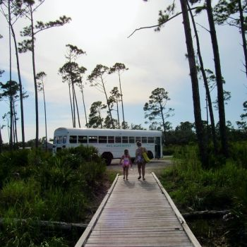 Le bus qui vous emmène à la navette de Shell Island