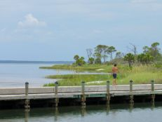 Le St Jospeh Peninsula State Park en Floride