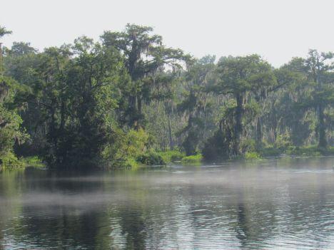 Lever de soleil au Wakulla Springs State Park en Floride
