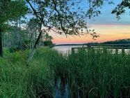 Coucher de soleil sur un bayou dans la forêt de Tate's Hell à East Point en Floride