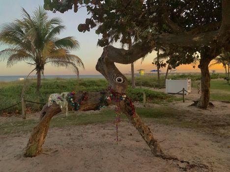 Les décorations de Noël à Pompano Beach