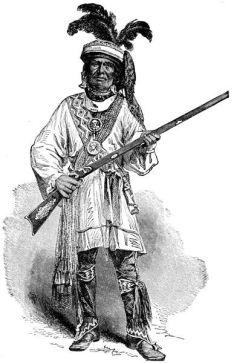 Guerrier Seminole
