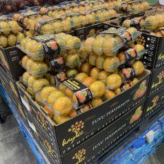 Ds Fuyus de Californie dans un supermarché américain