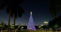 Le sapin de Noël géant de Delray Beach