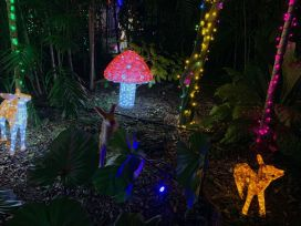 Miami : les belles décorations de Noël des Pinecrest Gardens