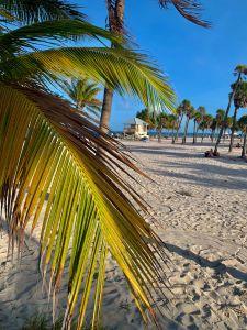 Centre de la plage de Crandon Park, sur l'île de Key Biscayne à Miami
