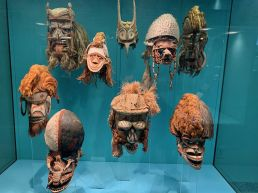 American-Museum-of-Natural-History-musee-histoire-naturelle-visiter-new-york-guide-de-voyage-8638~photo
