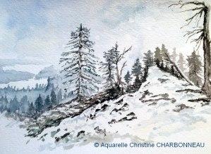 Christine CHARBONNEAU Randonnée hivernale (Visioateliers)