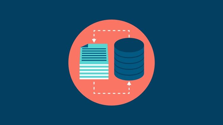 Oracle PL SQL Fundamentals Database Design 3course bundle