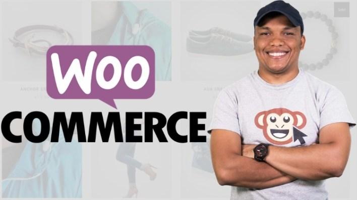 WordPress E commerce Build 2 Websites Dropshipping Store