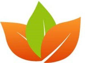 course kitchen lotus logo icon