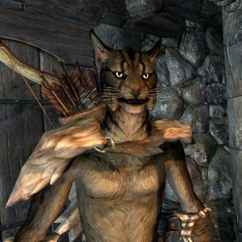 Khajiit from Skyrim