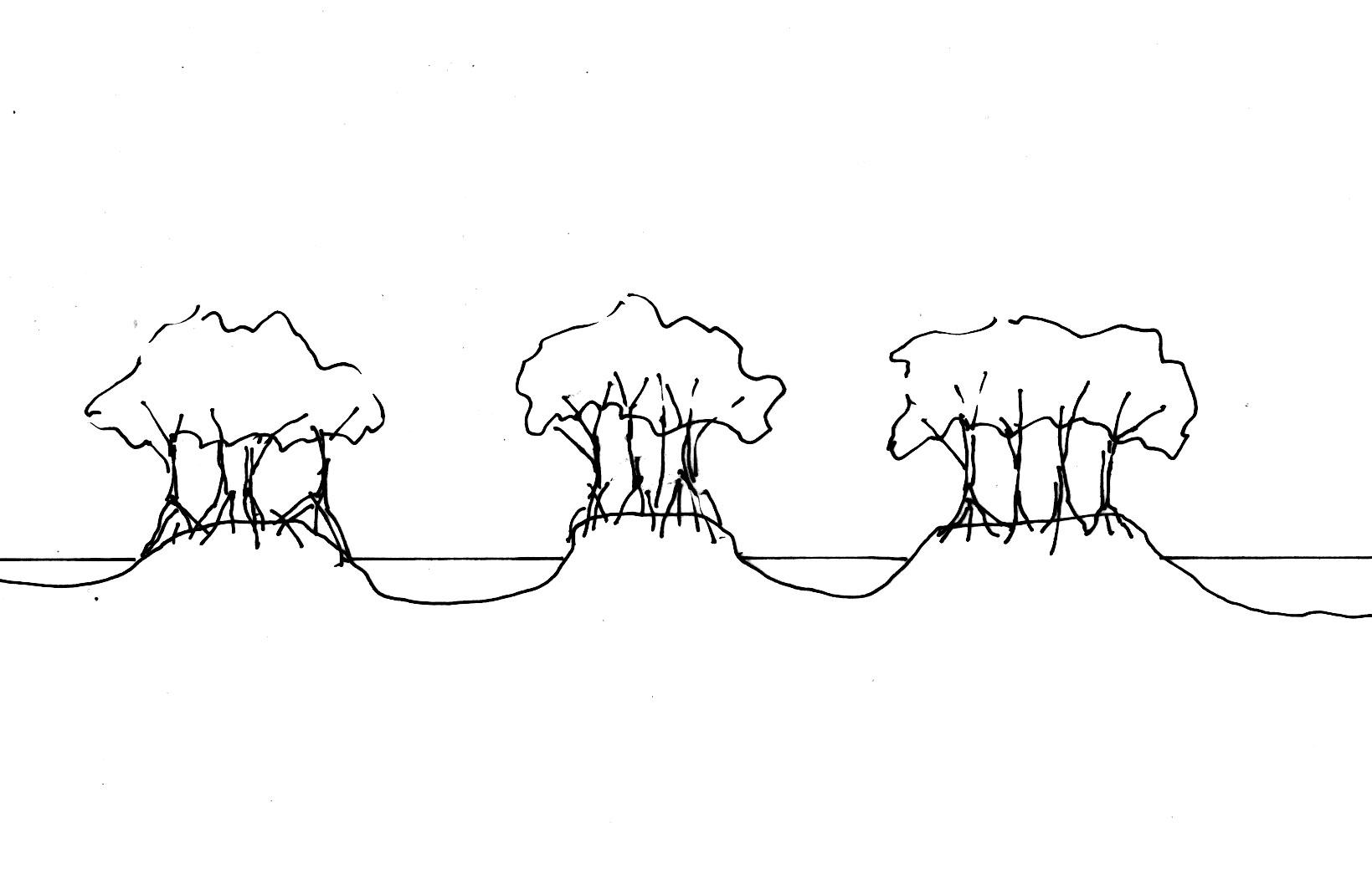 Shrimp Pond Design   Wiring Diagram Database