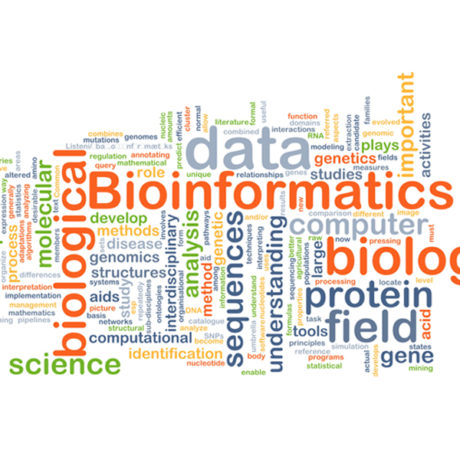 Image result for bioinformatics
