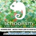 Schoolism – Mega Pack (20 Classes) with Jason Seiler, Nathan Fowkes, Stephen Silver & others [Size:290GB]
