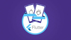 Flutter-Dart-The-Complete-Guide-2021-Edition