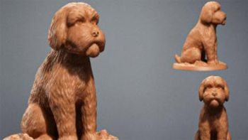 Zbrush dog sculpting for beginners to advanced was