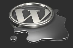 Formation Webmaster WordPress