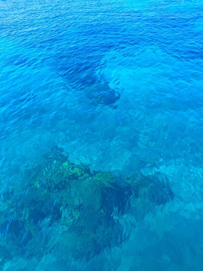 snorkel_water