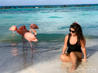 Flamingo Beach _Courtesy of Court39