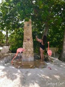Flamingo Beach _Courtesy of Court52