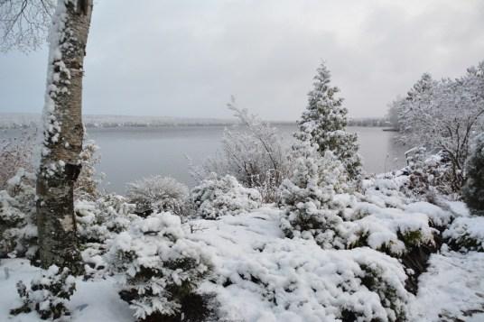 De la neige dans les Appalaches
