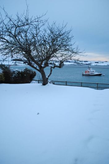 Snow in the village of Courtmacsherry