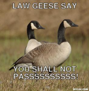 unf-geese-meme-generator-law-geese-say-you-shall-not-passssssssss-55dca1