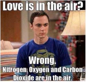valentines-meme-big-bang-theory-funny-meme-theory-72