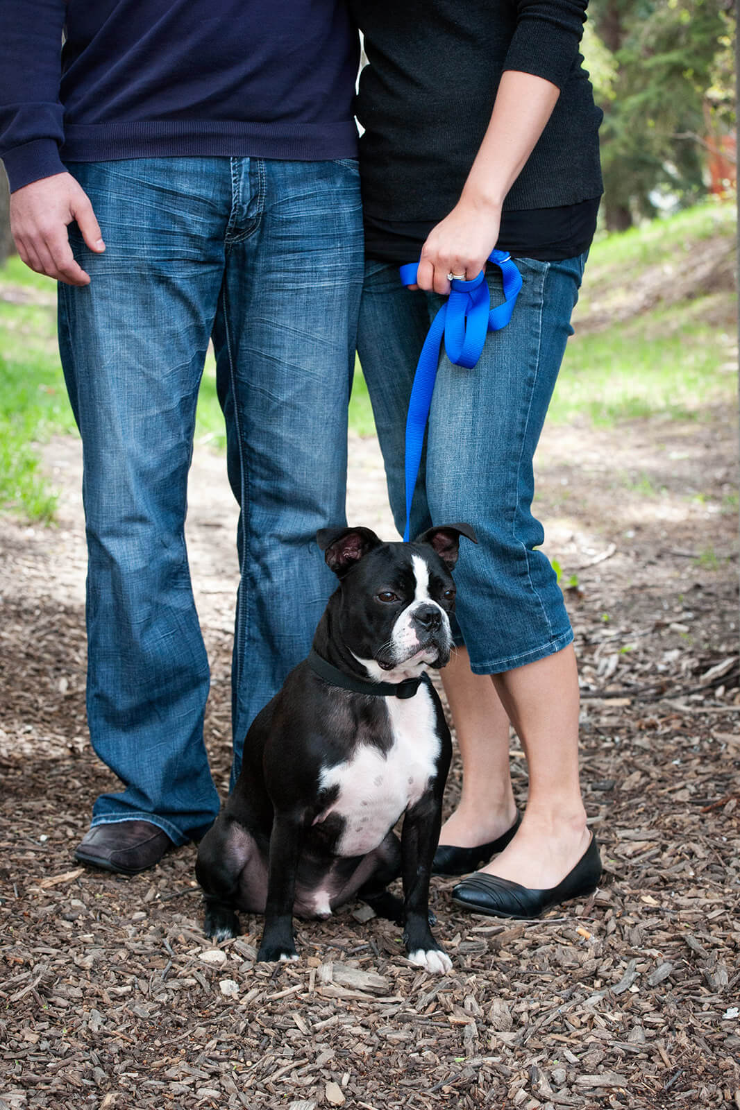 Regina Engagement Photographer - Adam & Vicki - Engagement with Dog
