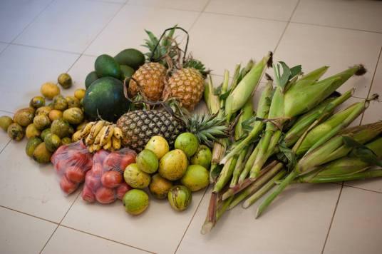 Regina Photographer - In Uganda - Produce and More Produce