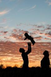 Courtney Liske Photography - Regina Family Photographer - Jaarsma Family - Sunset Flying