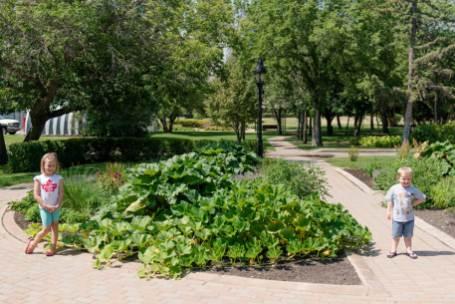 Regina Family Photographer - Government House - Vegetable Garden