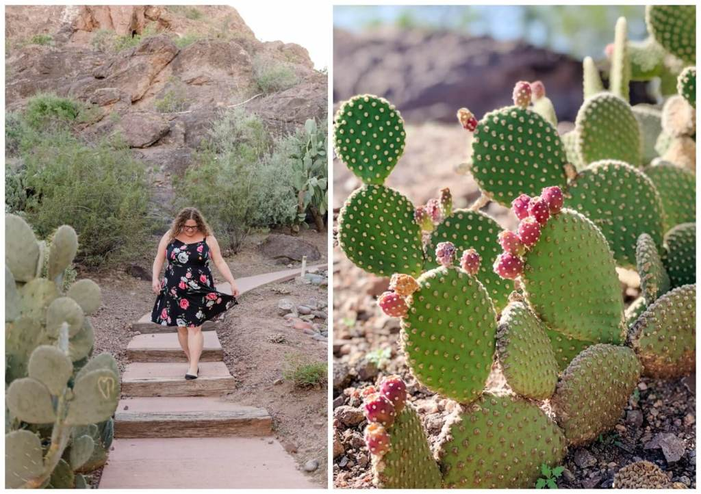 Regina Wedding Photographer - Phoenix - Arizona - Cactus - Stairs - Phoenix Marriott Tempe at The Buttes