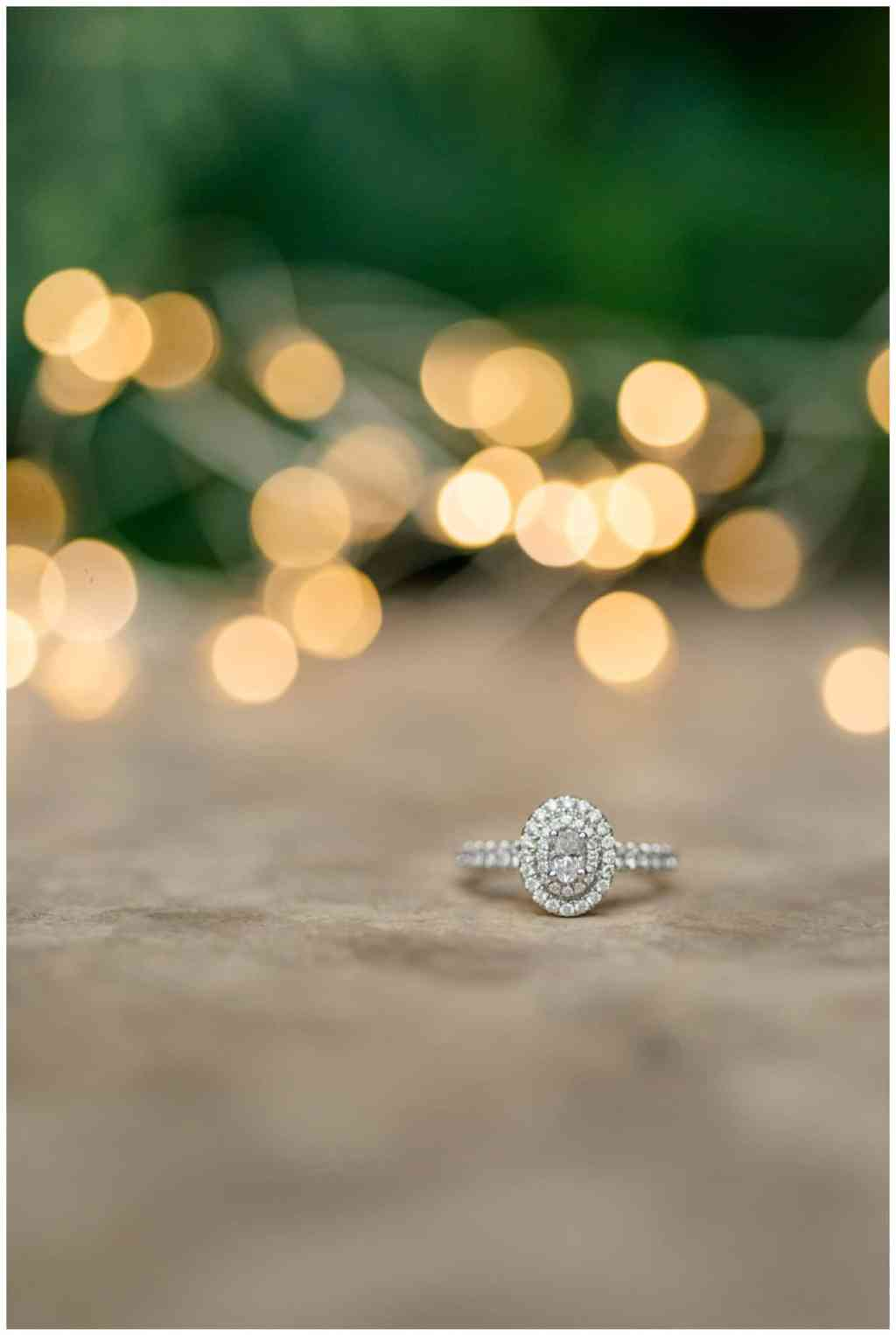 Regina Engagement Photography - Regina Wedding Photography - Mitch-Latasha - Winter Engagement - TC Douglas Building - MacKenzie Art Gallery - Ring