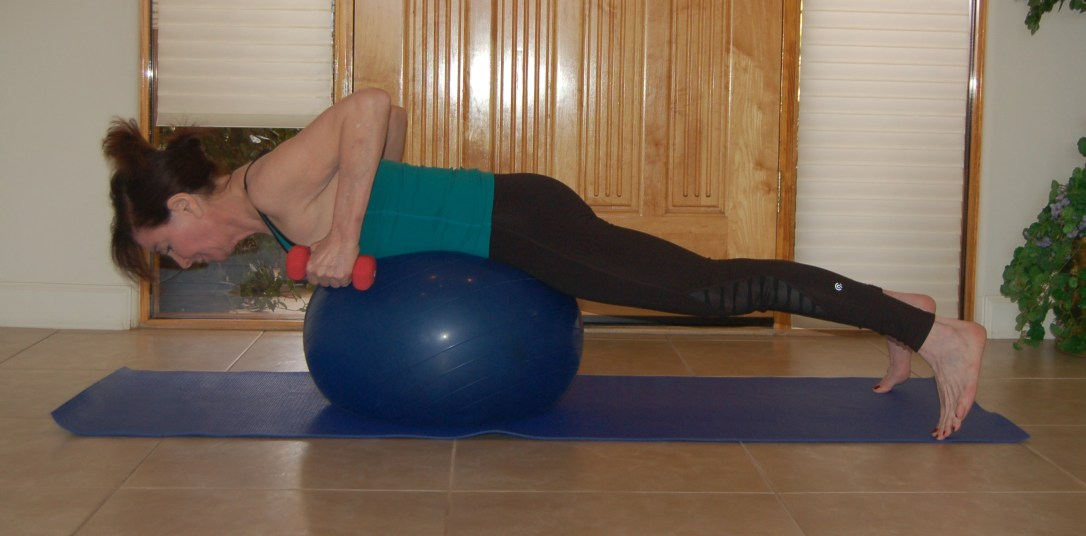 Stability Ball Tricep Kickback