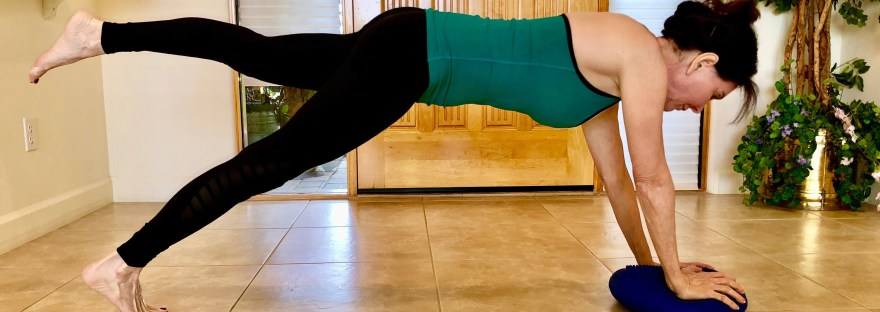 one leg plank using a wobble cushion