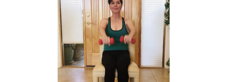seated shoulder raises