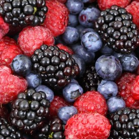 berries and brain health