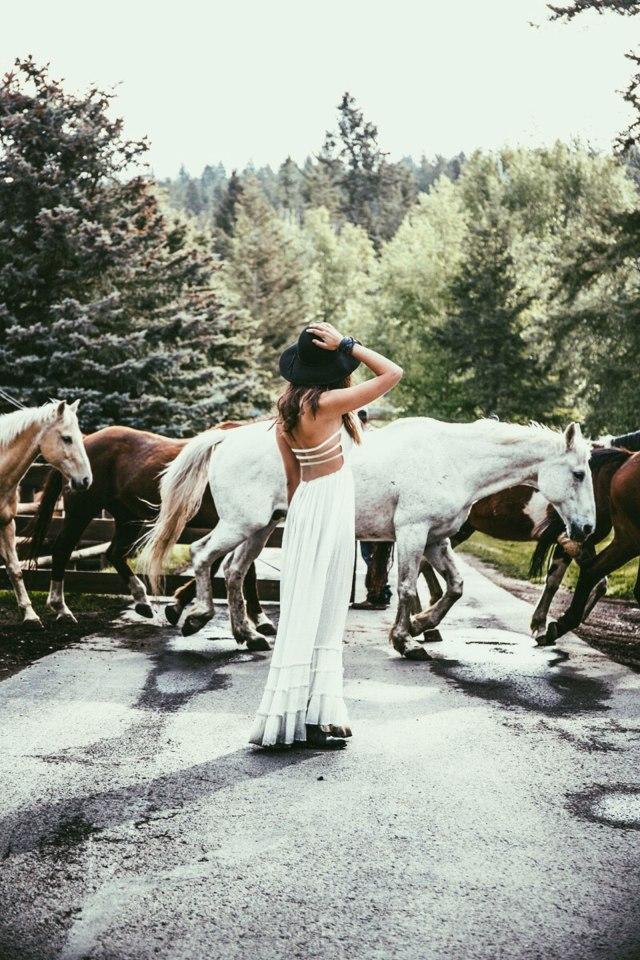 Montana-horses-Courtney-Scott-Travel-Blogger