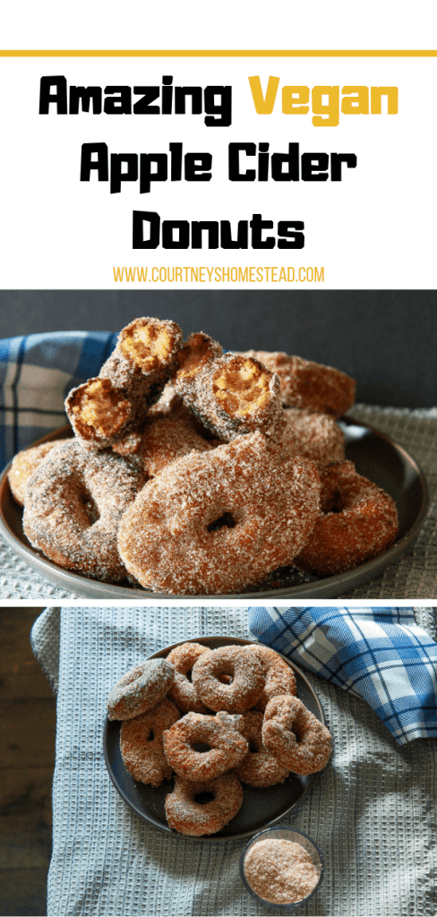 Amazing Vegan Apple Cider Donuts