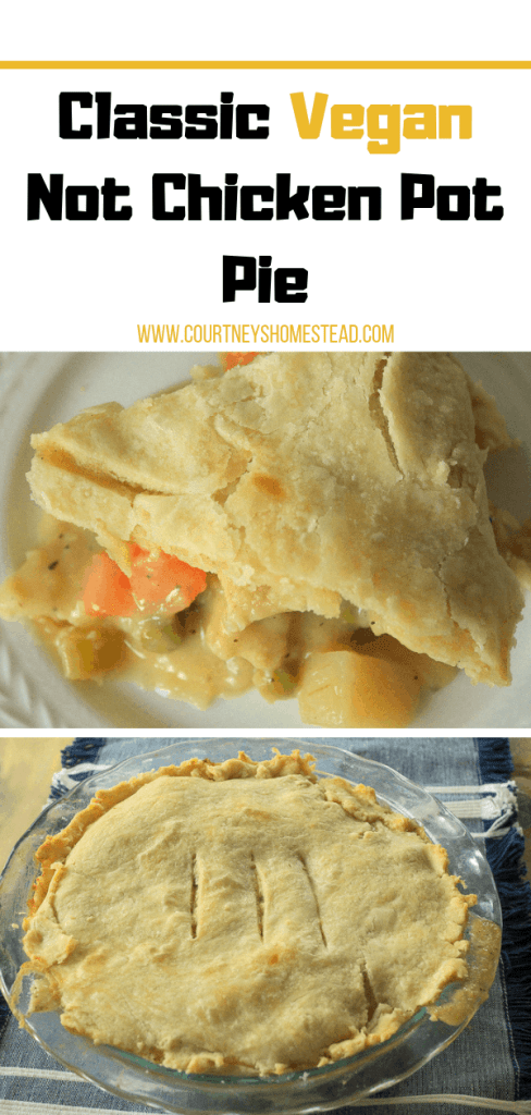 Classic Not Vegan Chicken Pot Pie