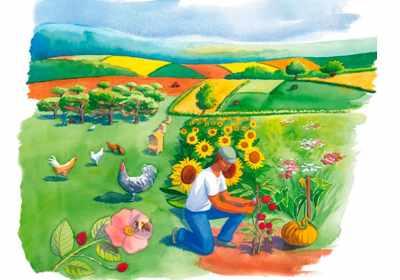 """Illustration """"graines de paysages"""", agence de communication comme un arbre"""