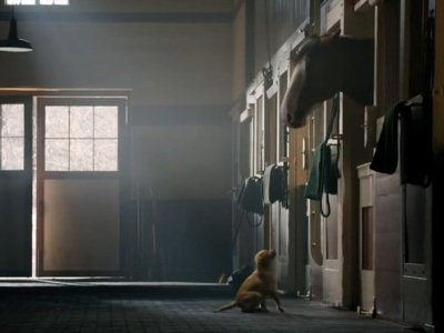 Dog's Best Friend still shot from beer commerical