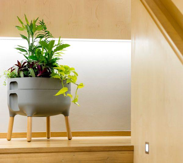 self water planter