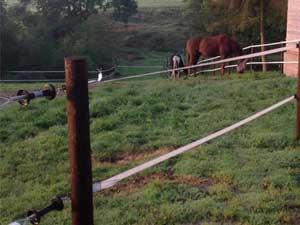 Cove Equestrian Fencing
