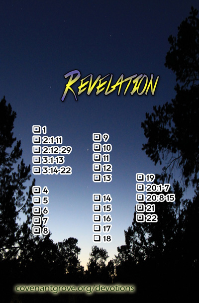 Devo Card - Revelation back