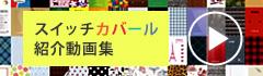 スイッチカバール動画集