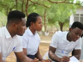 teacher trainees