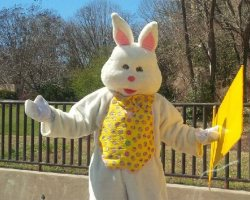 Person in Easter bunny outfit